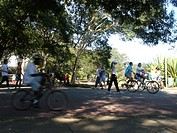 People Riding the Bicycle, Ibirapuera Park, São Pa