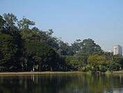 Landscape, Nature, Ibirapuera Park, São Paulo, Bra