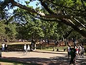 People, Ibirapuera Park, São Paulo, Brazil