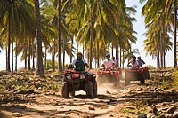 Drivers on quadbikes taking part in ATV Tour, Stone Island, Mazatlan, Sinaloa, Mexico