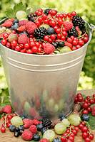 Bucket of berries