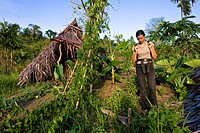 Papua New Guinea, East Sepik Province, region of Maprik, village of Kiminimbus, woman practising trekking