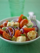 Panzanella Bread salad with tomatoes and onions, Italy