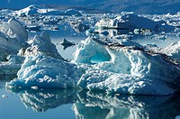 Greenland, East coast, Angmassalik region, Sermilik fjord, Tiniteqilaaq, Icebergs and blocks of ice in the fjord