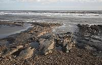 Coast between Dunwich and Walberswick, Suffolk, England During a storm the sea broke through the shingle bar into Dingle Marshes London Clay rock expo...