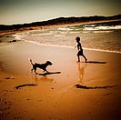 A boy and a dog on a beach