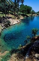 Israel, North district, Galilee, Gan Hashlosha Sachne National Park, hot springs and natural pools