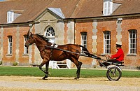 France, Orne, Le Pin_au_Haras, Haras National du Pin National Stud Farm, harnessing presentation in the court of honor, Property release OK