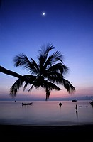 Thailand, gulf of Siam, Ko Tao island, Sairee beach