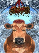 Cow with eyes closed standing under mistletoe