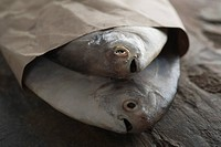 Close_up of raw fish wrapped in paper