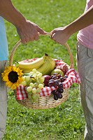 Young couple in park, carrying picnic basket, with fruit, Close_up, rear view