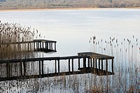 Fishing pontoon surrounded by Reeds at the edge of a lake, County Fermanagh Northern Ireland