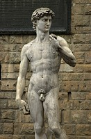 Statue of David by Michelangelo _ Florence, Italy