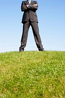 Businessman Standing On Hill