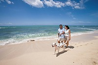 A couple walking with dog at beach