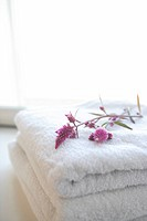 Flower on folded towels (thumbnail)