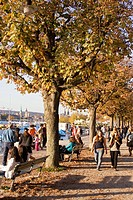 Switzerland Zuerich, Zurich, lake promenade in autumn, people