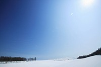 Japan, Hokkaido, Biei, Snow covered landscape with trees