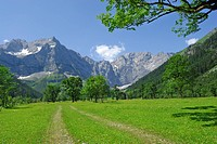 wide path in alpine pasture leading towards mountain range, Grosser Ahornboden, Eng, Karwendel range, Tyrol, Austria