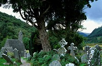 Old church and graveyard under some trees, Glendalough, Wicklow Mountains, County Wicklow, Ireland, Europe