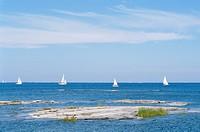 Sailing_boats on the sea.