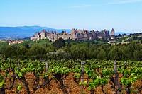 View of Carcassonne, La Cite, Citadel with city walls, The Way of St. James, Roads to Santiago, Via Tolosana, Chemins de St. Jacques, Carcassonne, Dep...