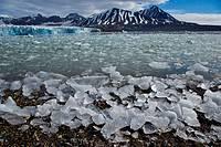 Svalbard archipelago, Arctic, Norway