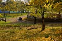 Ancient village with trees in autumn colour, Mesendorf or Meschendorf, Saxon village area, Transylvania, Romania, autumn