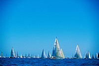 Yachts on sea during regatta