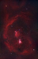 The Constellation Orion or The Hunter and its Nebulosity