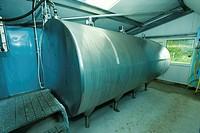 Dairy farming, bulk milk tank in milking parlour, England