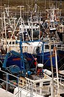 Fishing boats in coastal harbour, Oban, Argyll, Scotland