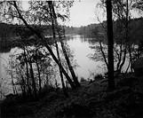 Lake. Judarforest. Sweden