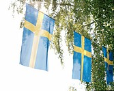 Swedish flags.