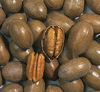 Pecan nuts in shells with two opened to show the edible nut Carya illinoensis.
