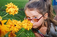 A six-year-old girl sniffs a flower, Pennsylvania, USA