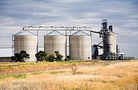 Wheat Silos at Bellata, central west NSW, Australia  Two trains are loading grain  Taken early in the morning, there was a violent storm rolling in be...