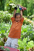 Mixed race boy holding vegetables in garden