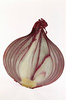 SHALLOT