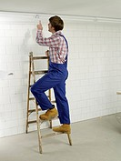 Man in work wear on a ladder