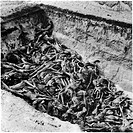 The bodies of the dead lie awaiting burial in a mass grave at the camp at Bergen_Belsen, the Nazi concentration camp in northwest Germany.