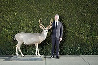 Businessman and deer in front of hedge