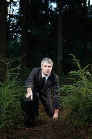 Businessman in forest holding briefcase (thumbnail)