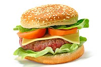 HAMBURGER (thumbnail)