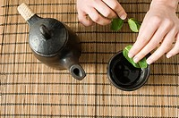 Making mint tea