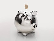 Coin and piggybank