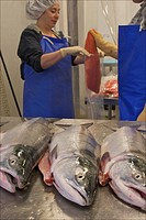Woman worker shows off fish at the Dancing Salmon fish processing facility, Dillingham, Alaska