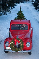 Man driving a vintage 1941 Ford pickup with a Christmas wreath on the grill and a tree in the back... (thumbnail)