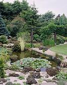 Pond with perennials
